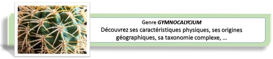 Gymnocalycium Galerie : menu supérieur Genre