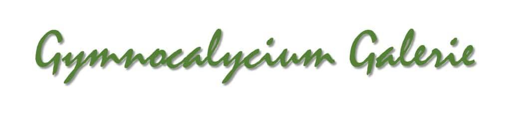 Gymnocalycium Galerie