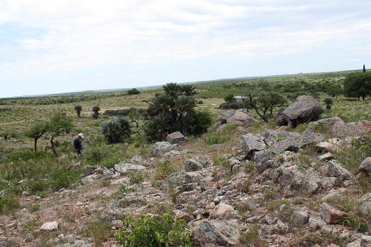 Biotope de Gymnocalycium bicolor RFPA 208 et G. calochlorum, © Flavien Heriot. San Pedro Norte, Cordoba, Argentine, 912 m.