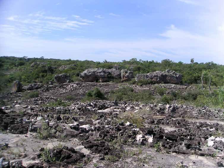 Site d'Ita Tren, station de G. fleischerianum, © Didier Roult. Département Cordilleras, entre Caacupe et Piribebuy, Paraguay. mars 2004