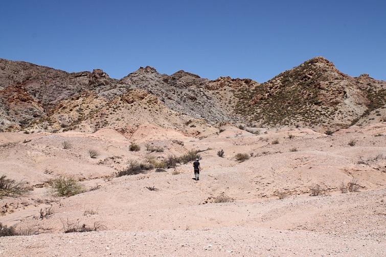 Biotope de Gymnocalycium glaucum ssp ferrarii RFPA 228, © Flavien Heriot. 3 km Nord de Villa Mazan, La Rioja, Argentine, 730 m.