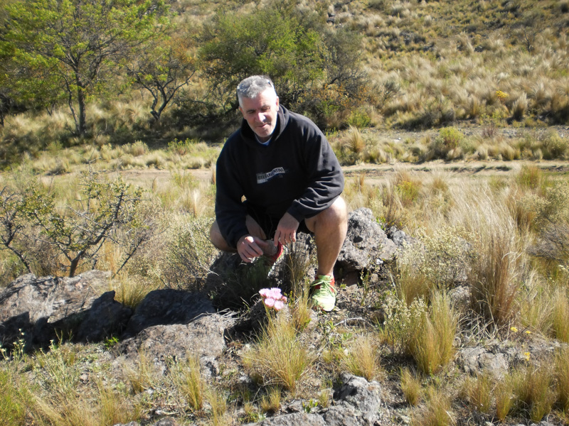 Gymnocalycium horridispinum SC 039. Cerro La Cocha, Cordoba, Argentine. © Sergio Gabriel Cabo