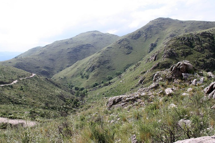 Biotope de Gymnocalycium monvillei, G. bruchii , G. mostii RFPA 202, © Flavien Heriot. Est La Falda , Cordoba, Argentine, 1334 m.