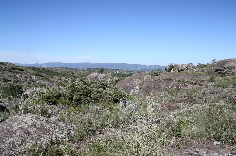 Biotope de Gymnocalycium monvillei RFPA 324, © Flavien Heriot. 1 km Ouest de Tanti, Cordoba, Argentine, 950 m.