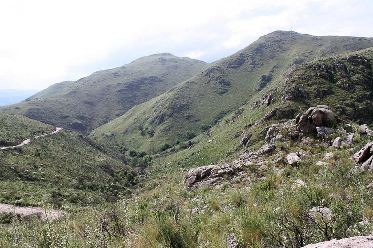 Biotope de Gymnocalycium mostii, G. bruchii , G. monvillei RFPA 202, © Flavien Heriot. Est La Falda, Cordoba, Argentine, 1334 m.