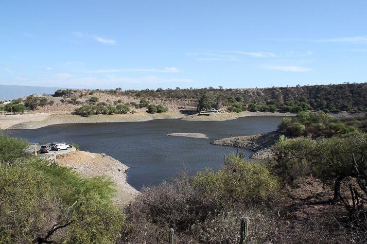 Biotope de Gymnocalycium nigriareolatum RFPA 222, © Flavien Heriot. Lago Lumeal, San Fernando de Catamarca, Catamarca, Argentine, 600 m.