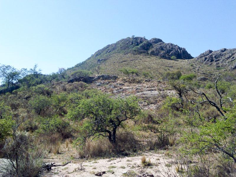 Zone d'habitat de Gymnocalycium achirasense v. orientale. Cerro La Cocha. 8 octobre 2016. © Sergio Gabriel Cabo.