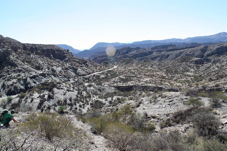 Biotope de Gymnocalycium piltziorum RFPA 278, © Flavien Heriot. Mirador de Huaco, San Juan, Argentine, 1130 m.