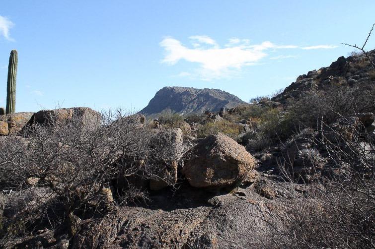 Biotope de Gymnocalycium piltziorum RFPA 297, © Flavien Heriot. Route d'accès à la Valle de la Luna, San Juan, Argentine, 1380 m.