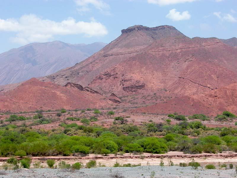 Habitat de Gymnocalycium schickendantzii v. delaetii, © Joël LODE. Quebrada de Cafayate, Salta, Argentine.