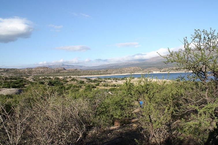 Biotope de Gymnocalycium valnicekianum, G. capillaense et G. quehlianum RFPA 203, , © Flavien Heriot. Dique El Cajon, Capilla del Monte, Cordoba, Argentine, 974 m.
