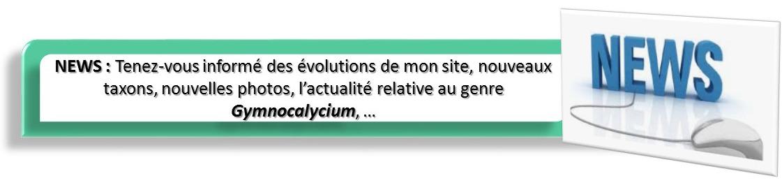 Gymnocalycium Galerie : onglet News